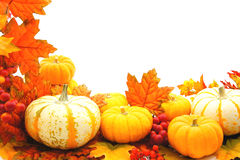 Jesień granica Obrazy Stock