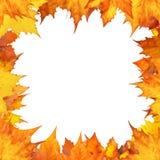 jesień granica Fotografia Royalty Free