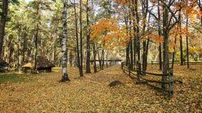 Jesień i kraj strona Zdjęcia Stock