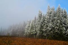 Jesień i zima Fotografia Royalty Free
