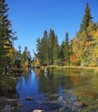 jesień jaskrawy kolorów krajobraz Obraz Royalty Free
