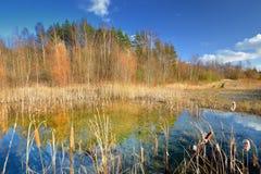 Jesień jeziora krajobraz Fotografia Stock