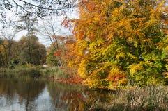 Jesień jeziorem Zdjęcie Royalty Free