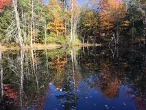 Jesień jezioro Obrazy Royalty Free