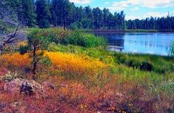 jesień jezioro Zdjęcie Royalty Free