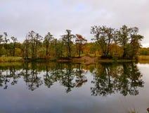 Jesień jezioro w Sweden Obrazy Stock
