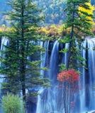 jesień jiuzhaigou drzewa siklawa Zdjęcia Royalty Free
