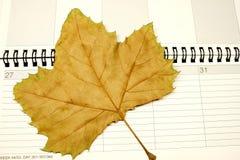jesień kalendarz Zdjęcie Royalty Free