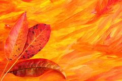 Jesień karta Obrazy Royalty Free