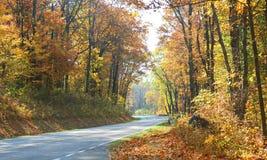 jesień kolorów prowadnikowa linia horyzontu Zdjęcia Stock