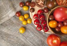 Jesień kolorowi pomidory na tekstylnym tle Zdjęcia Stock