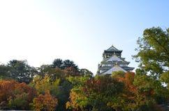 Jesień koloru zmiana Japonia przy Osaka kasztelem Zdjęcia Stock