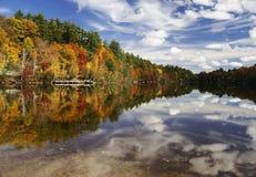 jesień kolory Zdjęcie Stock