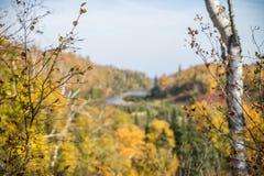 Jesień kolory Zdjęcia Stock