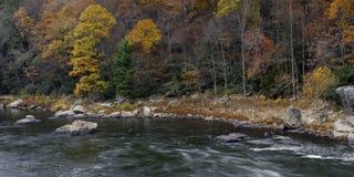 Jesień kolory przy Ohiopyle parkiem Obraz Stock