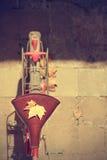 Jesień komesa rower Zdjęcia Royalty Free