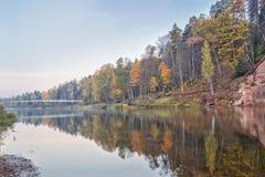 Jesień krajobraz i czerwieni kamienna faleza Gauja rzeka, Latvia, Europa zdjęcie royalty free