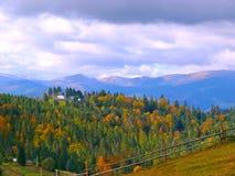 Jesień krajobraz Karpackie góry, ukraine Obrazy Royalty Free