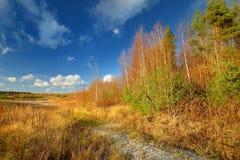 Jesień krajobraz przeciw Obraz Royalty Free