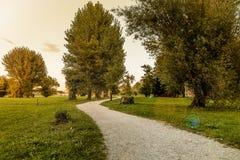 Jesień krajobraz przy zmierzchem Drzewa w miasto jawnym parku Obrazy Stock