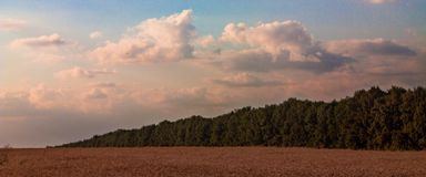 Jesień krajobraz pszeniczny pole Zdjęcia Royalty Free