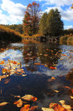 Jesień Krajobraz, Rosja Obraz Stock