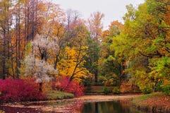 Jesień krajobraz. Rosja Zdjęcia Royalty Free
