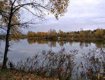 Jesień krajobraz, rzeka Fotografia Royalty Free