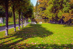 Jesień krajobraz w Catherine parku Tsarskoe Selo, Pushkin, St Petersburg Obrazy Royalty Free