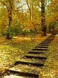 Jesień krajobraz z schodkami Obrazy Royalty Free