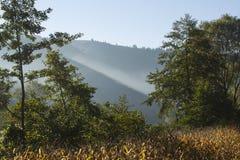 jesie? krajobrazowy Romania obraz royalty free