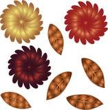 jesień kwiaty Obraz Stock