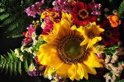 jesień kwiaty Fotografia Royalty Free