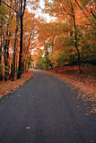 jesień las Zdjęcie Stock