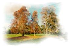 jesień las Fotografia Stock