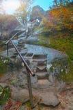 Jesień las w schodkach w skale i górach Zdjęcia Royalty Free