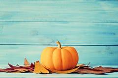 jesień leafs bania Obraz Royalty Free