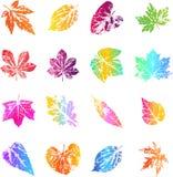Jesień liścia druki w jaskrawym modnym gradiencie barwią royalty ilustracja