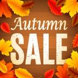 jesień liść czerwony sprzedaży słowo Zdjęcia Stock