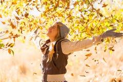 Jesień liści Spadać Obrazy Stock
