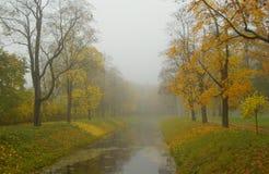 Jesień mglista Zdjęcie Stock