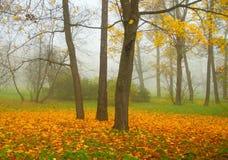 Jesień mglista Zdjęcie Royalty Free