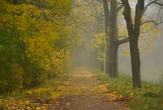 Jesień mglisty ranek przy Aleksander parkiem Obraz Royalty Free
