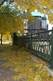 jesień miasto zdjęcia royalty free