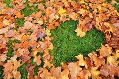 jesień miłość Zdjęcie Royalty Free