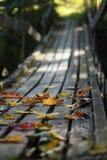 jesień most opuszcza drewno Obrazy Royalty Free