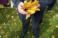 Jesień motyw Obrazy Stock