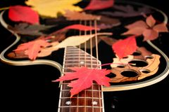 jesień muzyka Obraz Stock