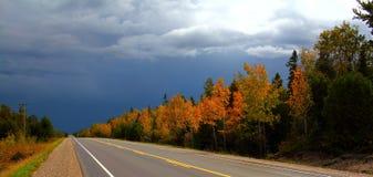 Jesień na drodze. Zdjęcia Stock