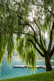 Jesień na Jeziornym Ledro fotografia stock